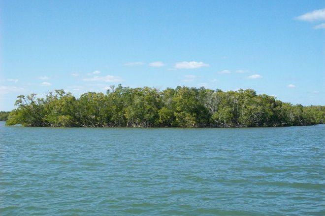 Everglades City Fishing Charters, Everglades National Park, United States