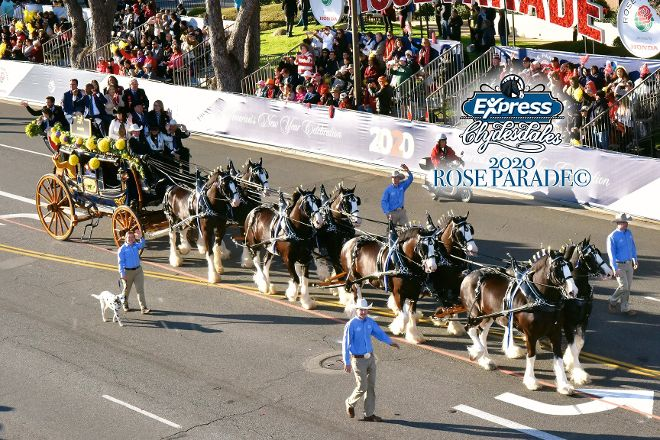 Express Clydesdales, Yukon, United States