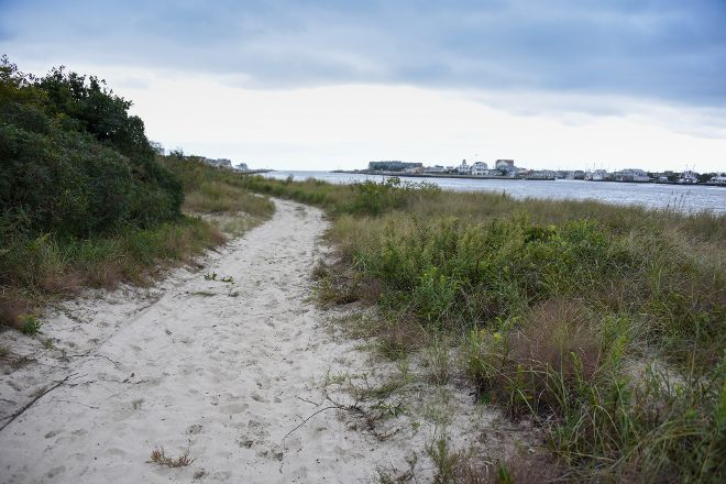 Fisherman's Cove Conservation Area, Manasquan, United States