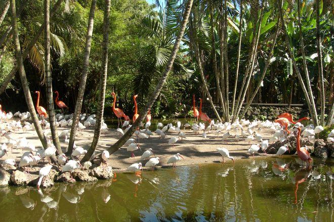 Flamingo Gardens, Davie, United States