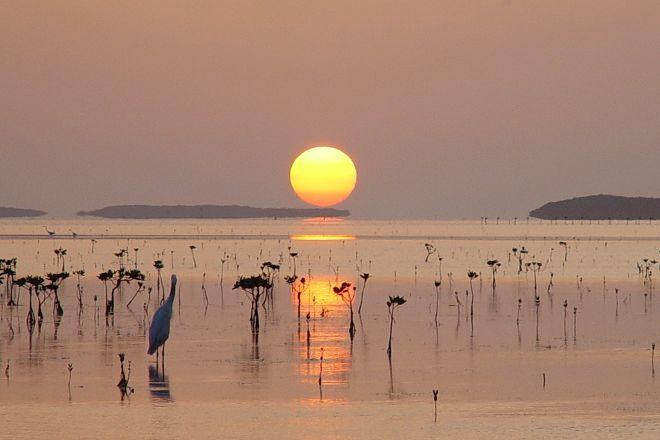 Florida Keys Flats Fishing, Tavernier, United States