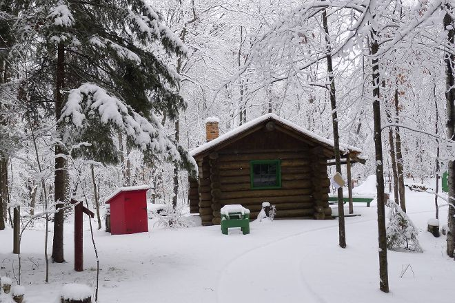 Forest History Center, Grand Rapids, United States