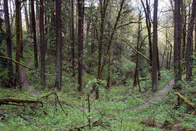Forest Park, Portland, United States