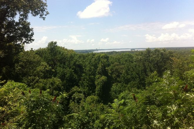 Fort Pillow State Park, Henning, United States