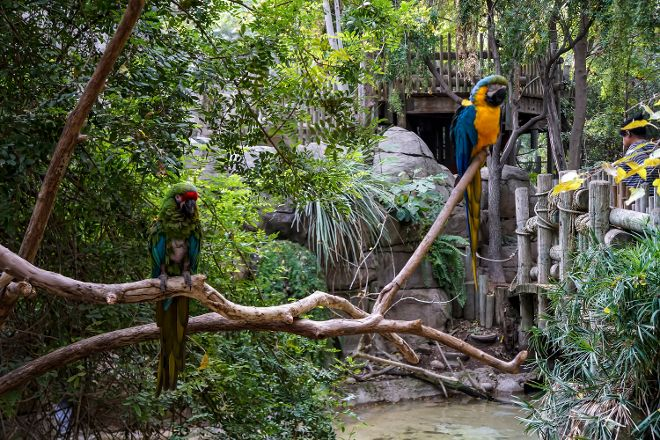 Fresno Chaffee Zoo, Fresno, United States