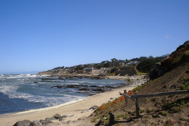 Friends of Fitzgerald Marine Preserve, Moss Beach, United States