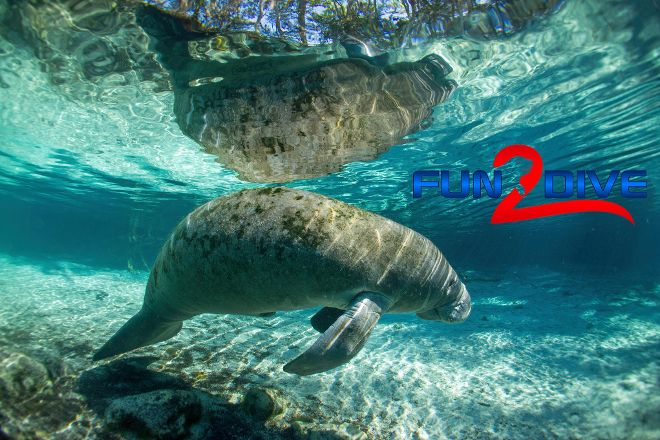 Fun 2 Dive Manatee Tours, Crystal River, United States