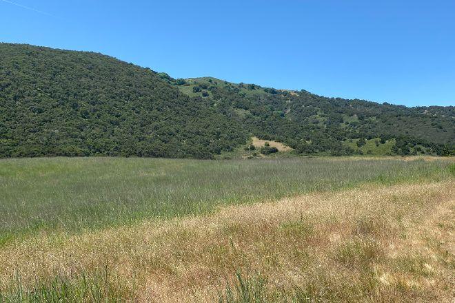Garland Ranch Regional Park, Carmel Valley, United States