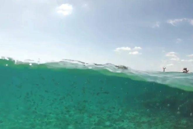 Get Wet WaterSports, Riviera Beach, United States