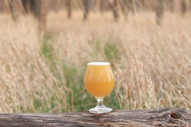 Gilded Goat Brewing Company, Fort Collins, United States