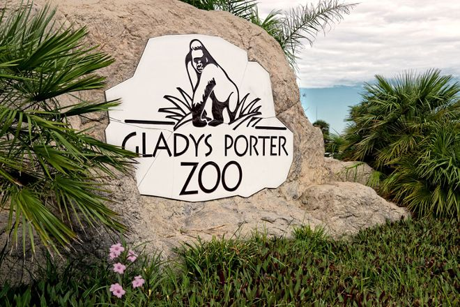 Gladys Porter Zoo, Brownsville, United States
