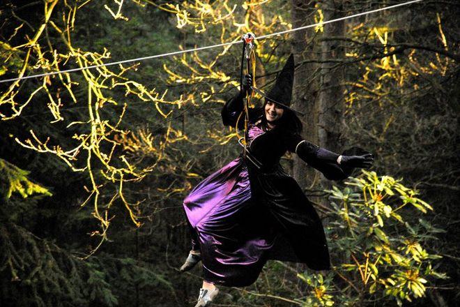 Go Ape Zipline & Adventure Park, Plano, United States