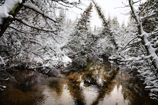 Grass River Natural Area, Bellaire, United States