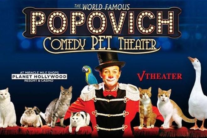 Gregory Popovich's Comedy Pet Theater, Las Vegas, United States