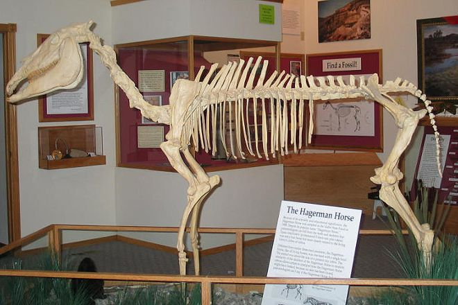 Hagerman Fossil Beds National Monument, Hagerman, United States