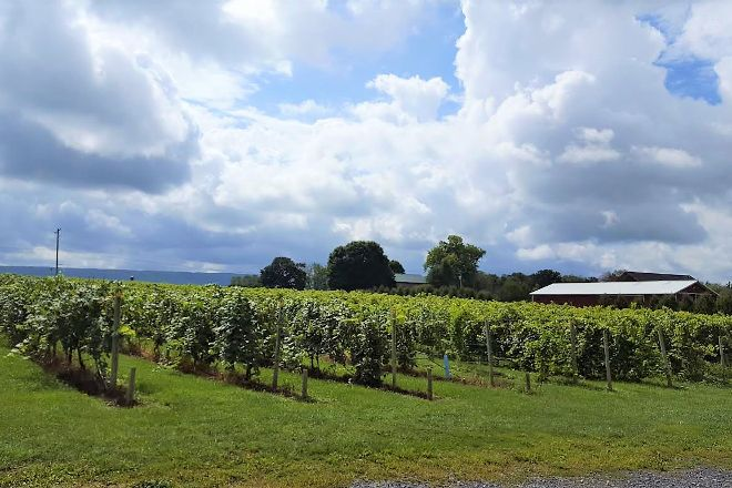 Happy Valley Vineyard and Winery, State College, United States