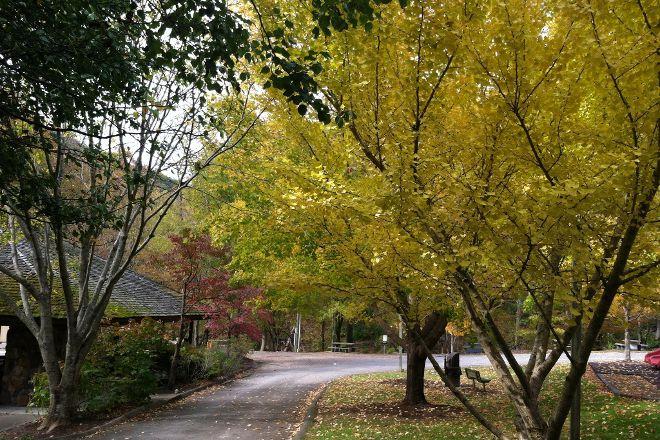 Herbert Holt Park, Gatlinburg, United States