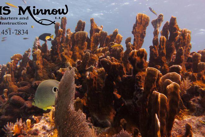 HMS Minnow Dive Charters, Key Largo, United States