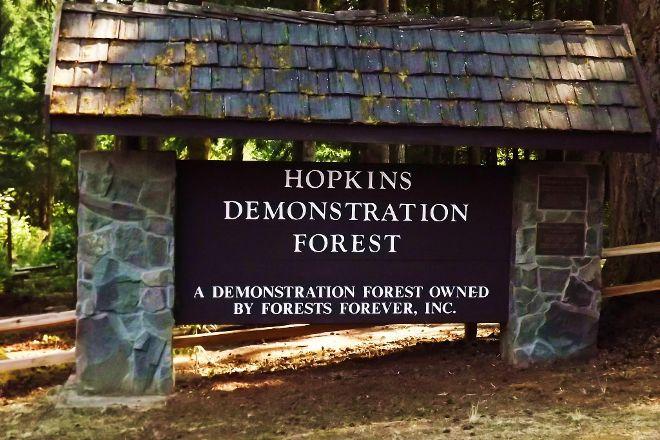 Hopkins Demonstration Forest, Oregon City, United States