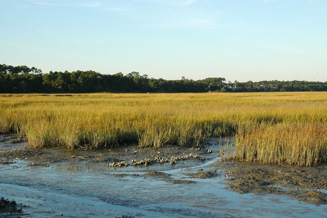 Huntington Beach State Park, Murrells Inlet, United States