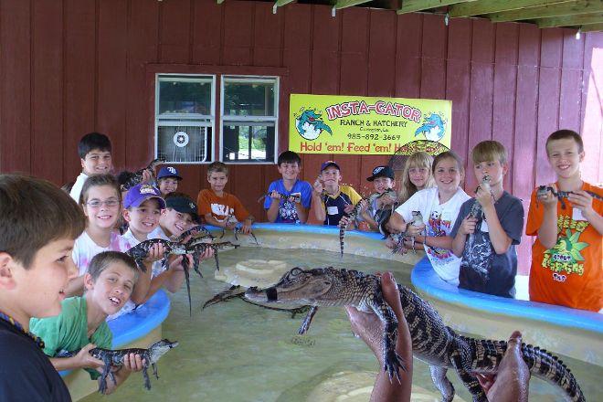 Insta-Gator Ranch & Hatchery, Covington, United States