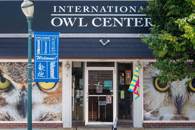 International Owl Center, Houston, United States