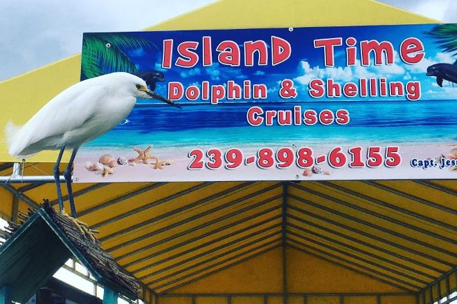 Island Time Dolphin & Shelling Cruises, Fort Myers Beach, United States