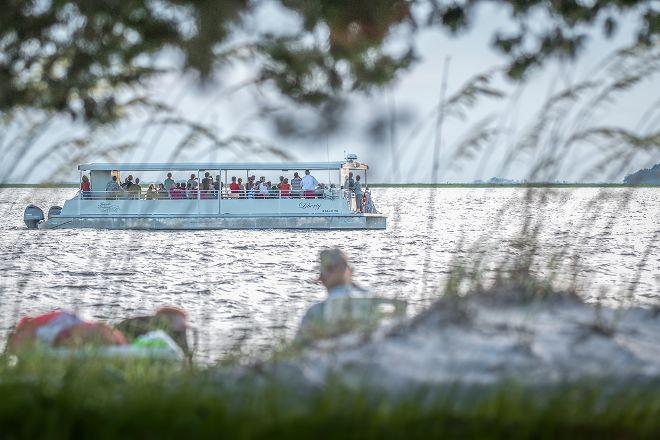 Jekyll Island Dolphin Tours, Jekyll Island, United States