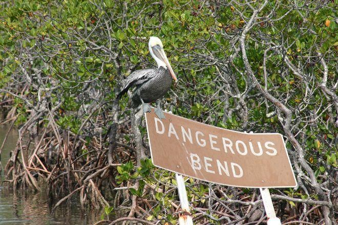 John Pennekamp Coral Reef State Park, Key Largo, United States