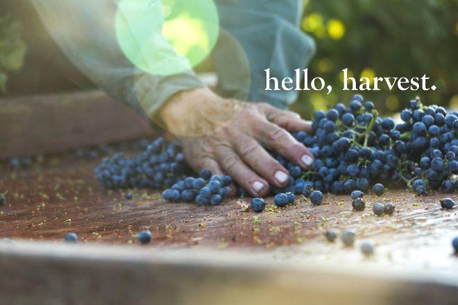Jordan Vineyard & Winery, Healdsburg, United States