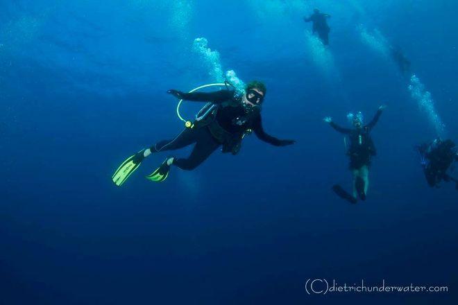 Jupiter Scuba Diving, Jupiter, United States