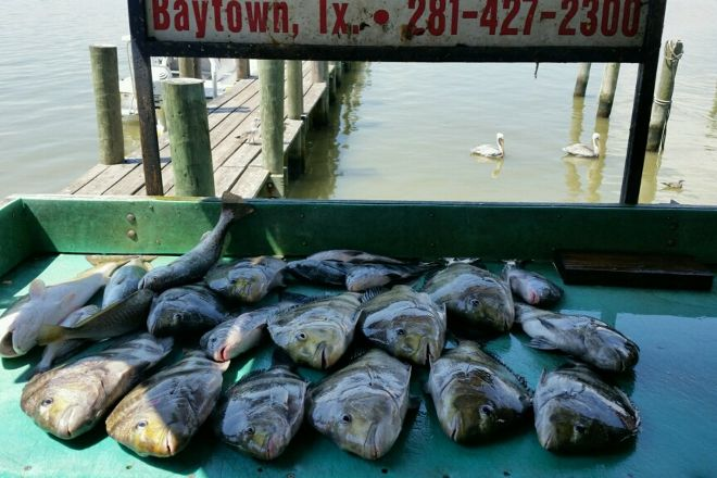 Just Cast Charters, Galveston, United States