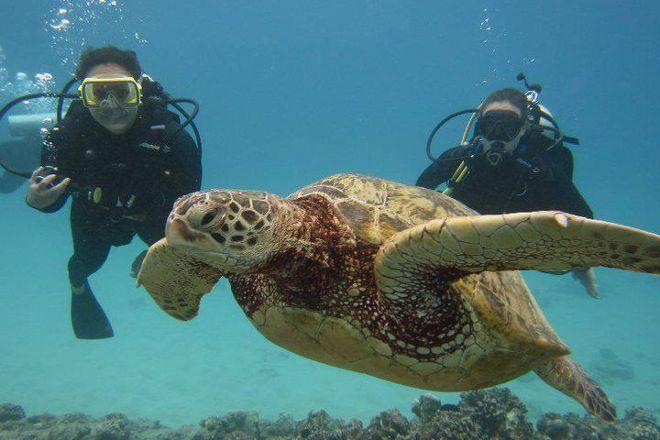 Kaimana Divers, Honolulu, United States