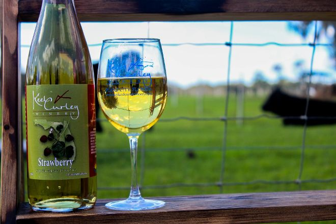 Keel And Curley Winery, Plant City, United States