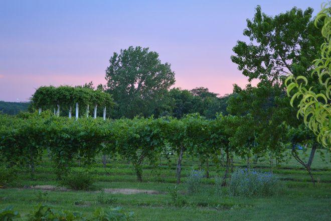 La Vida Loca Winery, Indianola, United States
