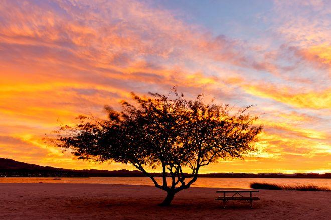 Lake Havasu State Park, Lake Havasu City, United States