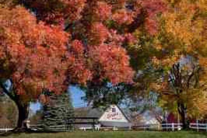 Larsen's Apples, Placerville, United States