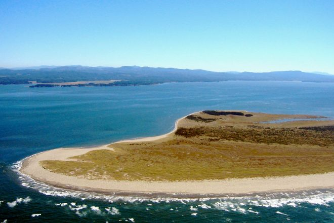 Leadbetter Point State Park, Oysterville, United States