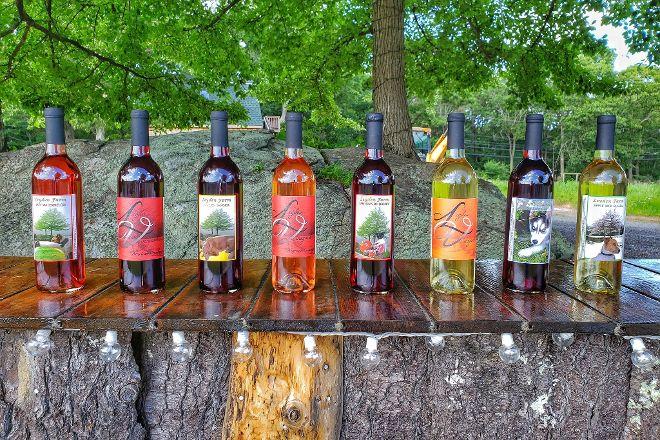 Leyden Farm Vineyard and Winery, West Greenwich, United States