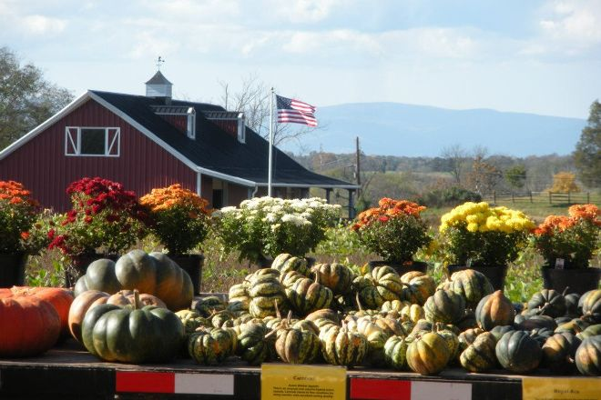 Liberty Mills Farm, Somerset, United States