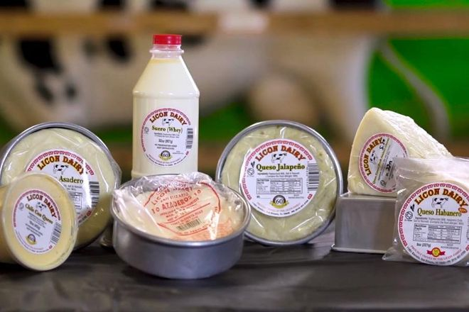 Licon Dairy, San Elizario, United States