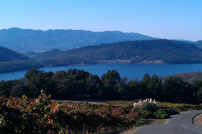 Lonnie's Wine Tours & Transportation, Napa, United States