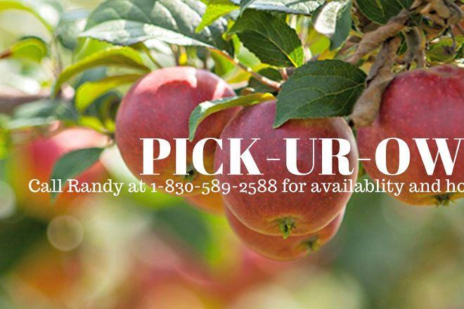Love Creek Orchards, Medina, United States
