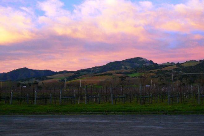 Loxton Winery, Glen Ellen, United States