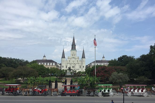 Lucky Bean Tours, New Orleans, United States