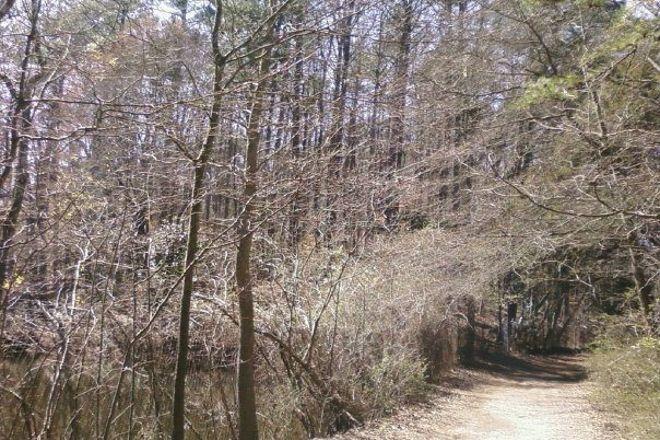 Lullwater Park, Atlanta, United States