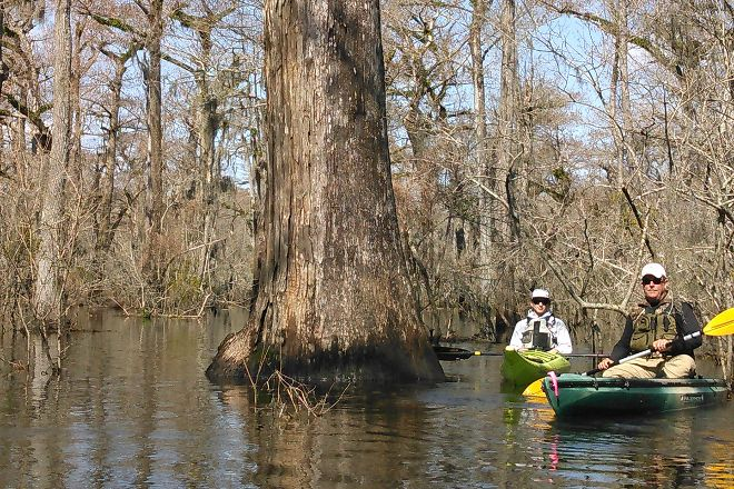 Mahanaim Adventures - Kayaking Day Adventures, Wilmington, United States