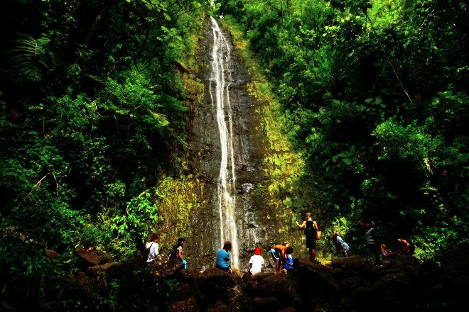 Manoa Falls, Honolulu, United States