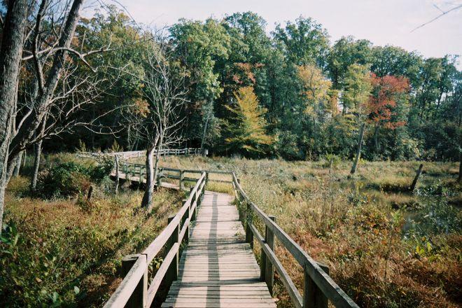 Mason Neck State Park, Lorton, United States