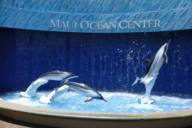 Maui Ocean Center, Wailuku, United States